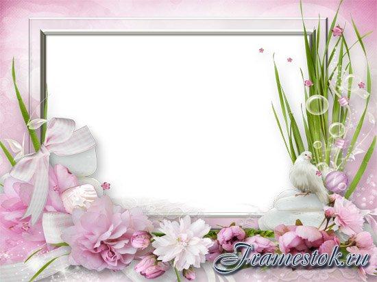 Красивые фоны для фотошопа и фотографий