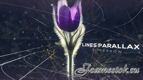 Lines Parallax Slideshow - Project for After Effects (Videohive)