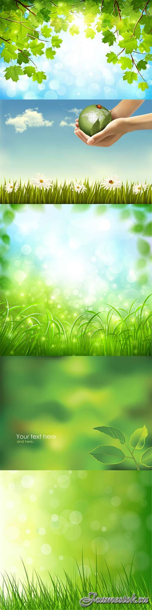 Spring backgrounds vector nature