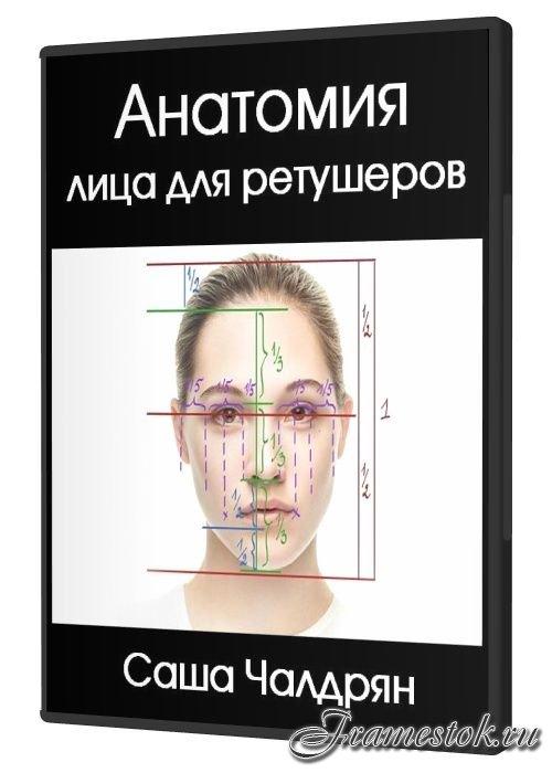 Анатомия лица для ретушеров (2018)