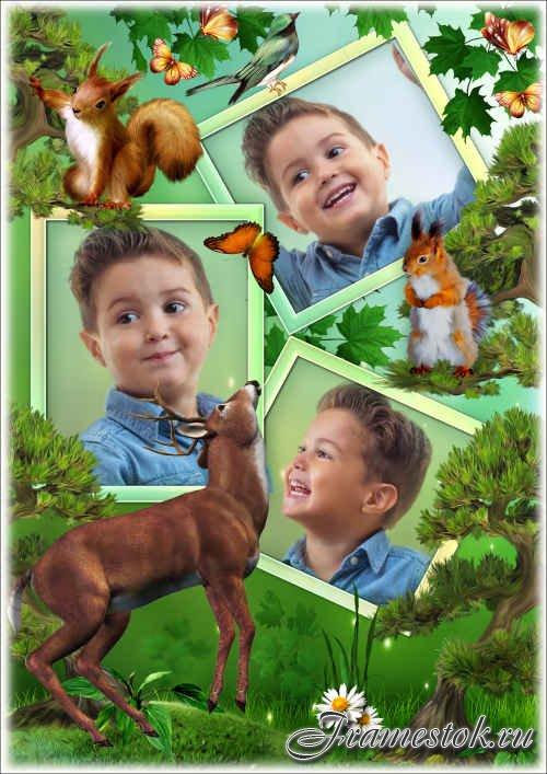 Рамка для фото с дикими животными - Летний пейзаж