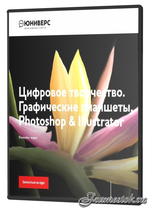 Цифровое творчество. Графические планшеты, Photoshop & Illustrator (2021)