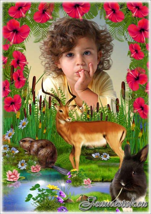 Летняя рамка с животными - Цветочная заводь